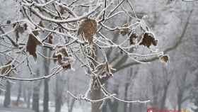 valladolid-frio-invierno-navidad-8