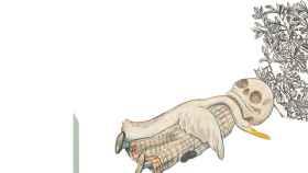 Una de las ilustraciones de El pato y la muerte, editado por Barbara Fiore.