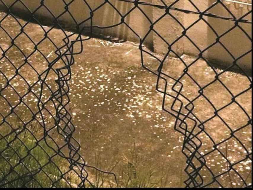 Imagen enviada por Matos a EL ESPAÑOL mostrando la verja de la cárcel de Caxias, cortada.