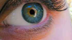 Los ojos nos delatan: para saber si alguien te escucha, mira sus pupilas