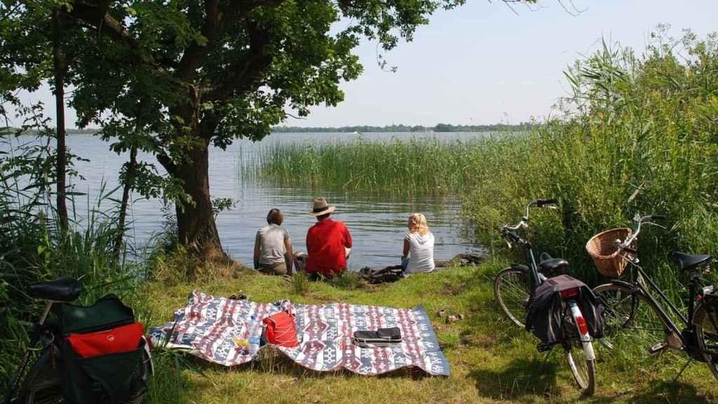 organizar un picnic 7