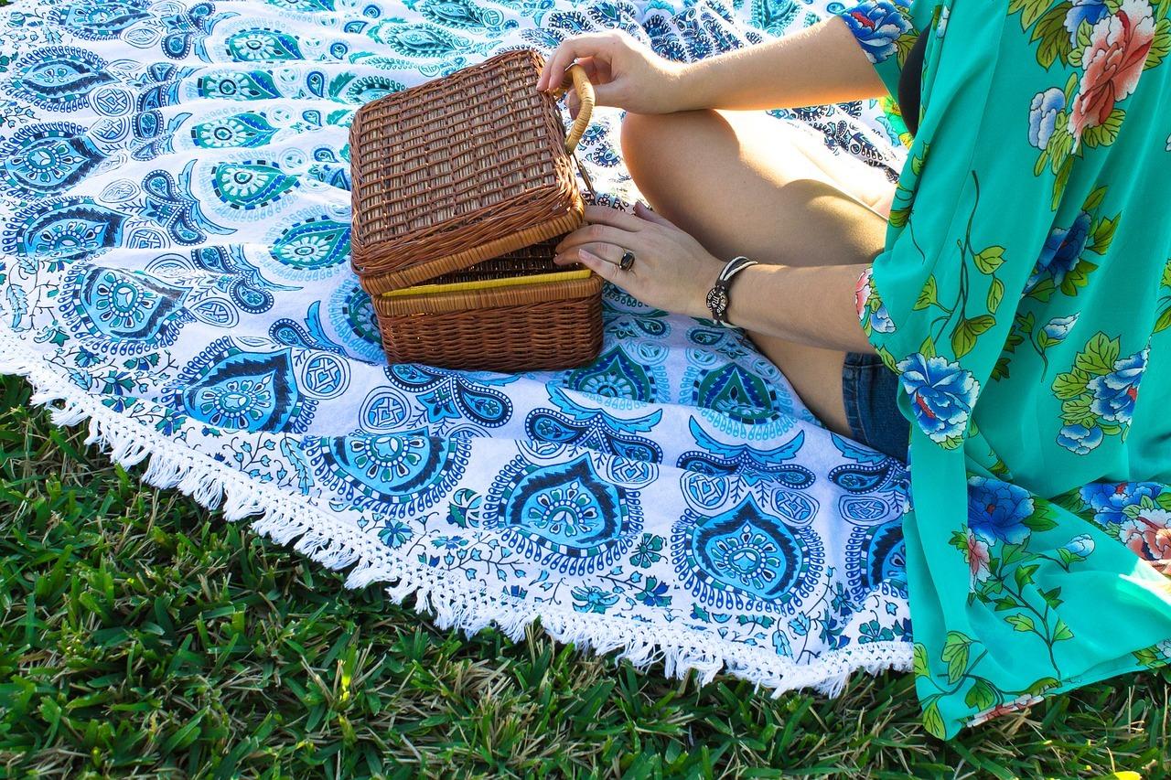 organizar un picnic 1