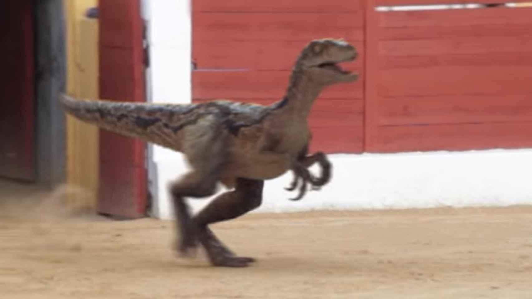 Fotograma del vídeo, con el velociraptor montado, recién salido de toriles