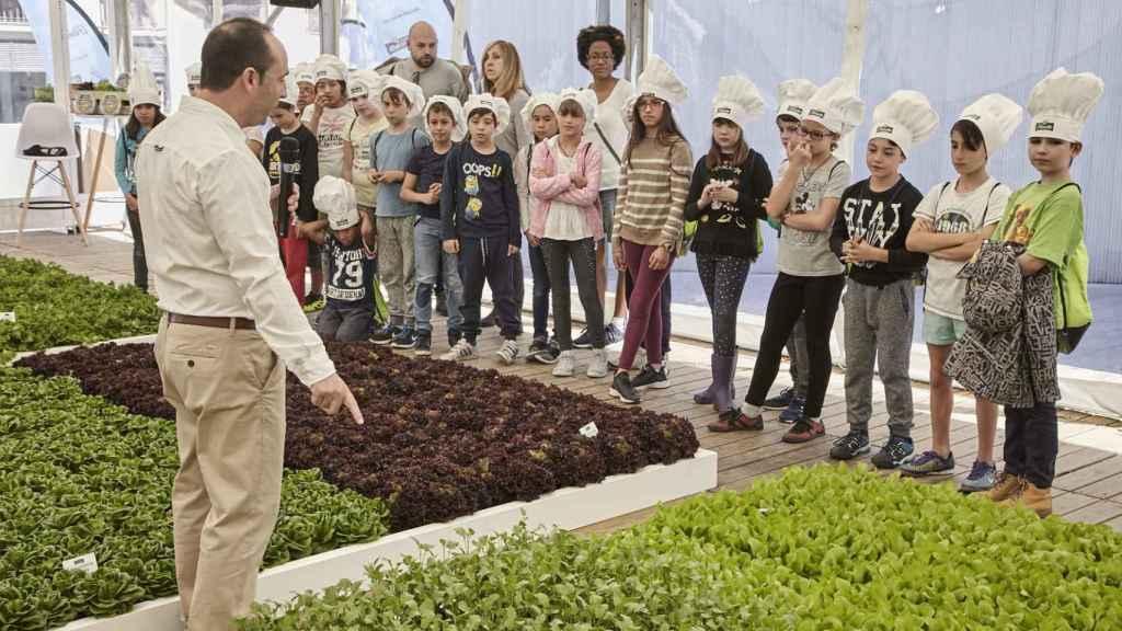El huerto de Barceló ha recibido la visita de escolares.