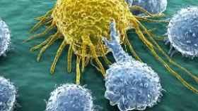 La inmunoterapia despierta a las defensas contra el cáncer.