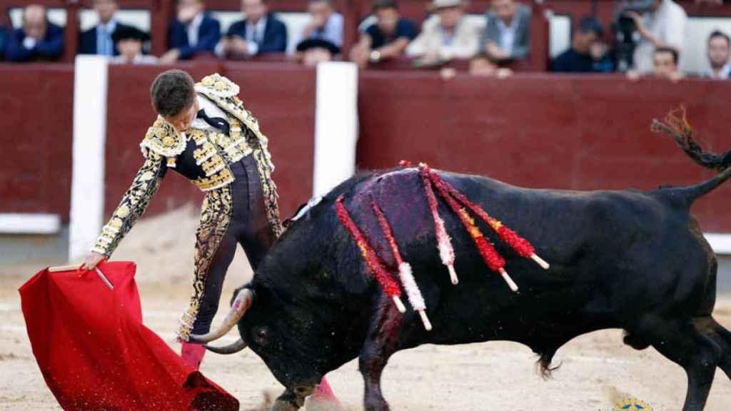 Excelente derechazo de Ginés Marín al extraordinario 'Barberillo' de Alcurrucén