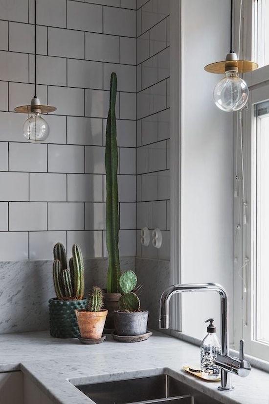 decorar-la-cocina-con-plantas-4