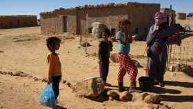 saharaui-acogida-ninos-valladolid