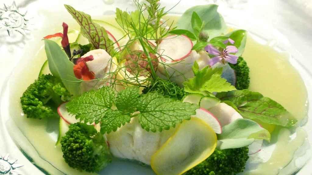 hierbas-frescas