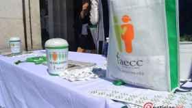 aecc cuestacion cancer valladolid (1)