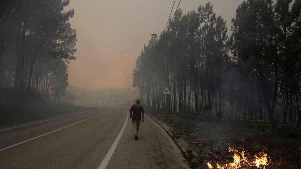 El incendio de Portugal ha devastado ya 30.000 hectáreas.
