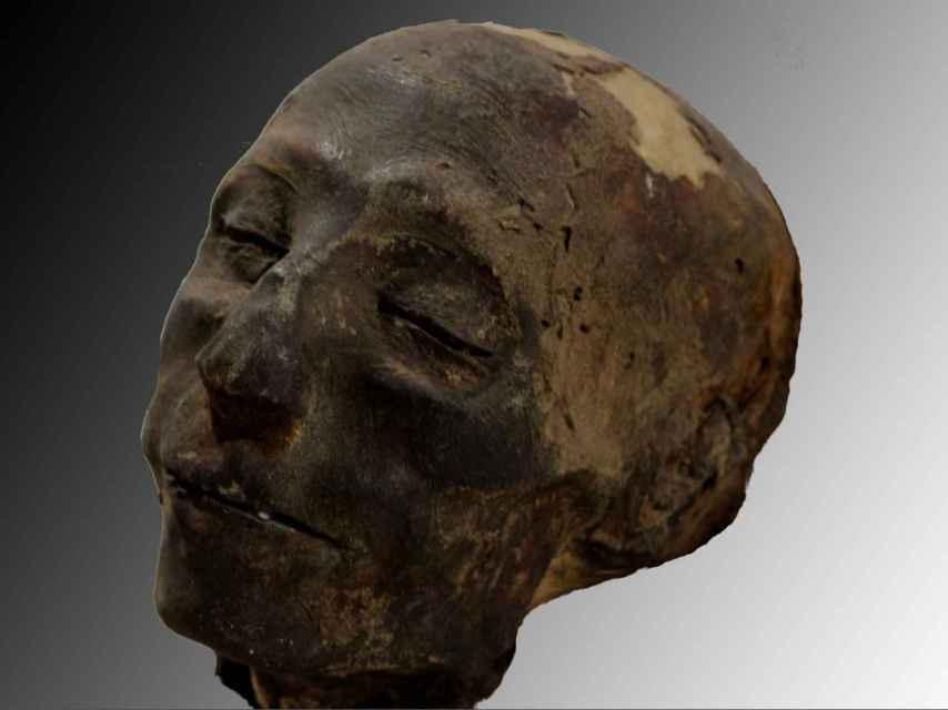 Cabeza de Nebiri, dignatario egipcio