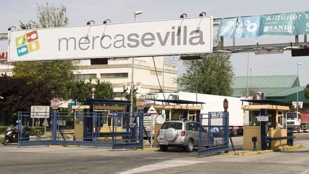 La instrucción del caso Mercasevilla comenzó en 2010