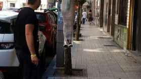 Un soltero plastificado colgado de un árbol: Gijón, capital de las despedidas más locas