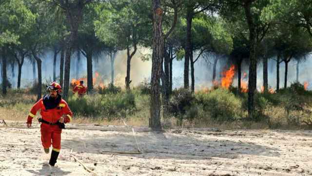 Los bomberos trabajan para tratar de apagar las llamas.