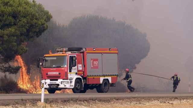 Bomberos intentan apagar un foco de fuego en la carretera que une las localidades de Mazagón y Matalascañas.