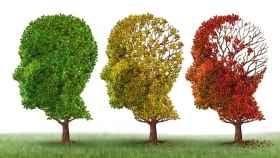 Analogía del Alzheimer con tres árboles.