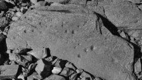 Petroglifos esculpidos en la roca
