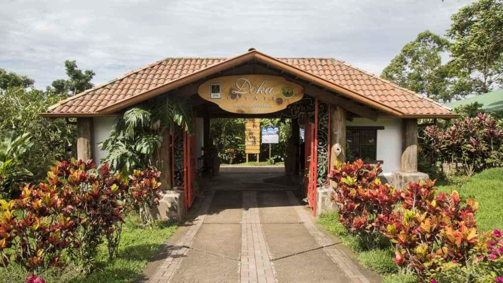 Doka Estate, en Sabanilla de Alajuela, es una de las plantaciones de café más conocidas del país.