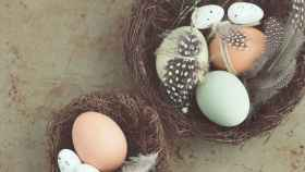 kate-remmer-huevos-comestibles-que-no-son-de-gallina