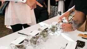 Barras de marihuana en boda