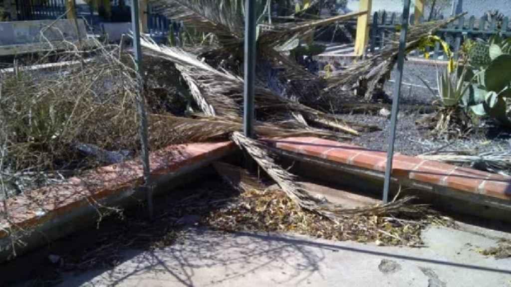 Una zona de recreo, inutilizada por la caída de los árboles