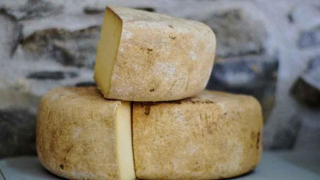 alexander-maasch-Unsplash-queso-curado