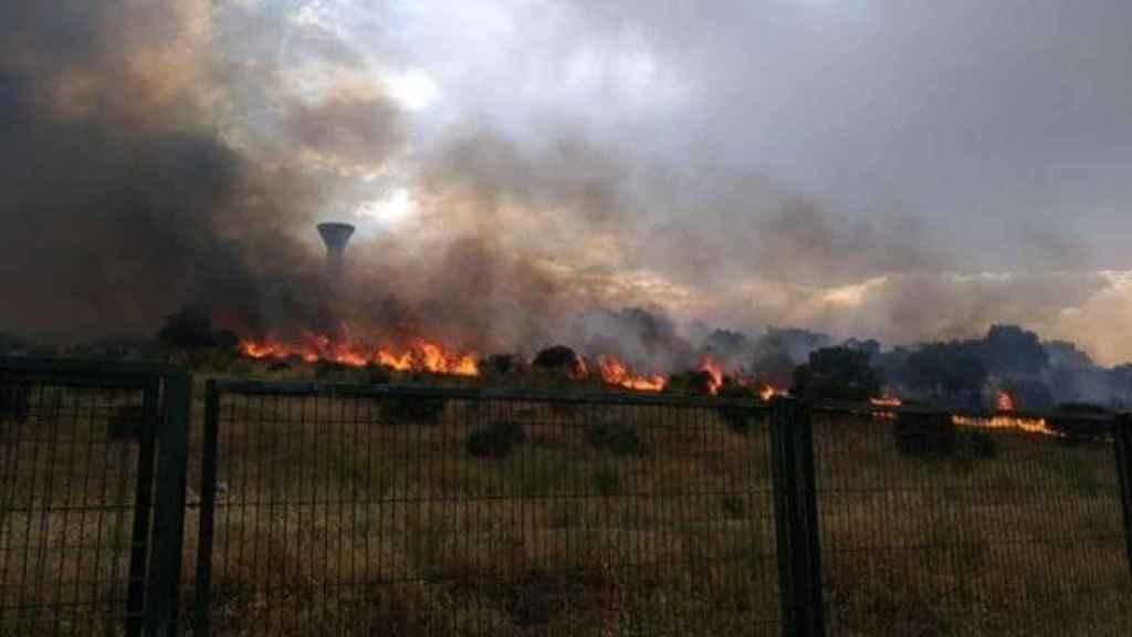Imagen del fuego