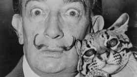 El artista surrealista Salvador Dalí.