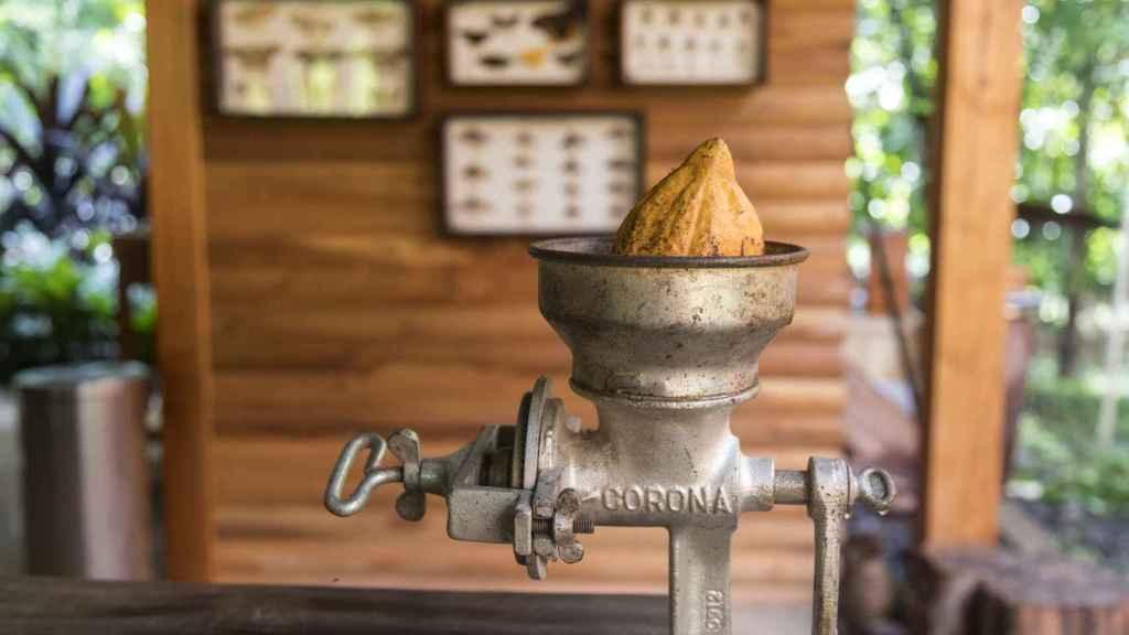 En Macaw Lodge se aprenden los usos sagrados que los mayas hacían de la planta del cacao.