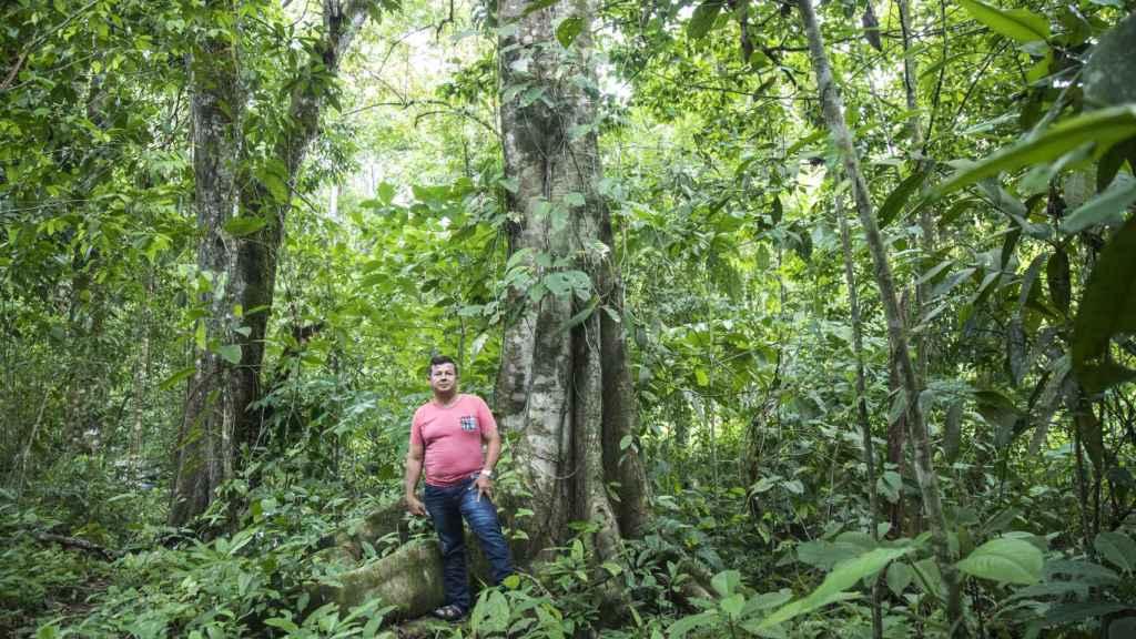 Lalo, presidente del Comité del Ojoche, bajo un árbol de ojoche.