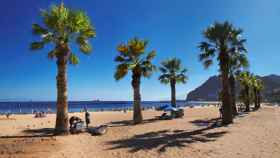 Una paradisiaca playa en las Islas Canarias.