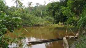 Isla de Mentawai en Sumatra