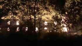 Zamora perdigon incendio fabrica 5
