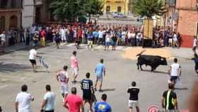 toro verdejo fiestas rueda 2017 6