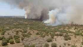 Zamora-incendio-pinar-del-oro