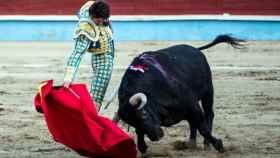 torero castella