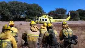 zamora incendio helicóptero pino del oro (6)