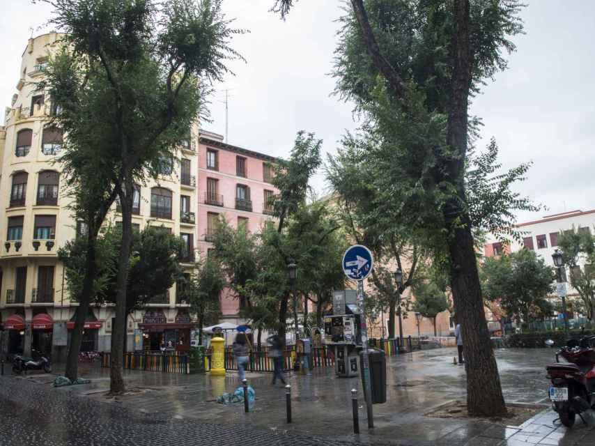 Plaza de Dos de Mayo, una zona que también carece, en algunas partes, de protección con bolardos. Entre el árbol y los pivotes cabe un coche grande.