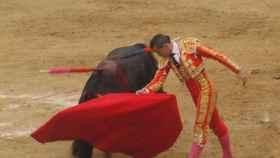 Valladolid-Toros-Pedrajas-corrida-20