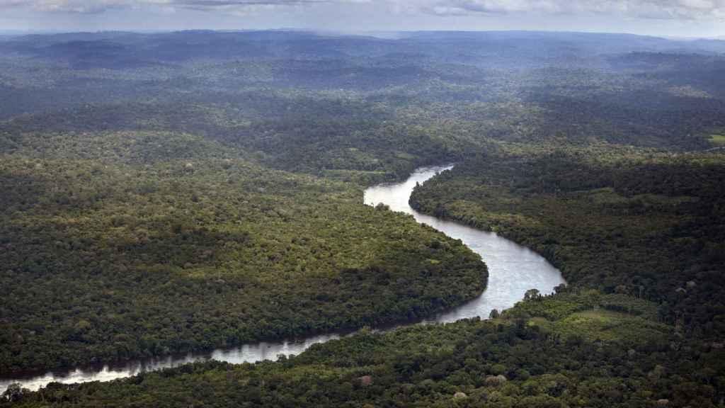 Vista aérea del Amazonas a su paso por la provincia brasileña de Amaná.