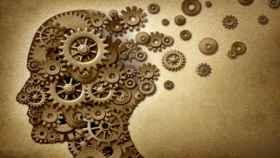 Investigadores  de EEUU cuestionan la teoría clásica de formación de recuerdos
