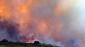 zamora incendio vegalatrave (3)