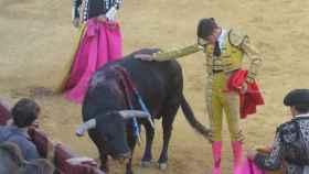 Valladolid-Tordesillas-encierro-toros-09