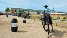 feria-del-caballo-2016-ciudad-rodrigo-41