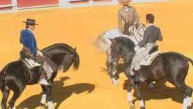 Valladolid-Tordesillas-rejones-03