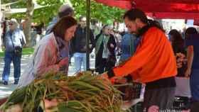 Zamora mercado ecologico 3 2