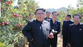 Kim Jong-Un durante una visita a una plantación de manzanas.
