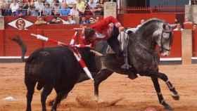 rejones 2017 Salamanca (6)