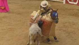 Valladolid-Toros-Pedrajas-corrida-23